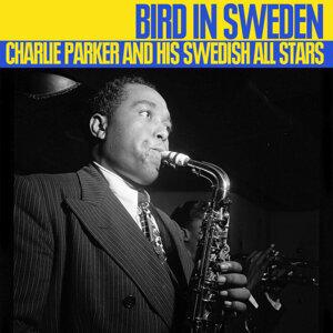 Bird In Sweden