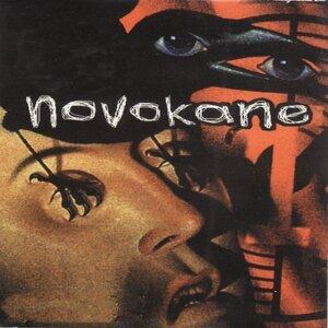 Novokane