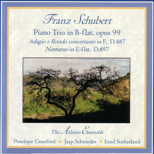 Schubert Piano Trio in B flat, Op.99