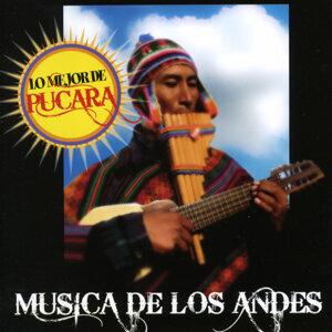 Música de Los Andes: Lo mejor de Pucara