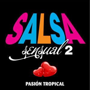 Salsa Sensual, Vol. 2