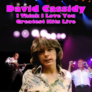 I Think I Love You - Greatest Hits Live