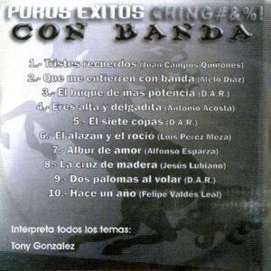 Puros Exitos Chingones Con Banda