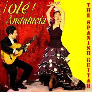 Flamenco School, Olé Andalucía!