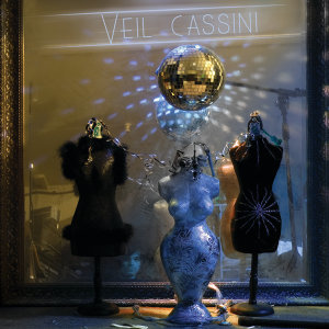 Veil Cassini