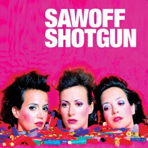 Sawoff Shotgun