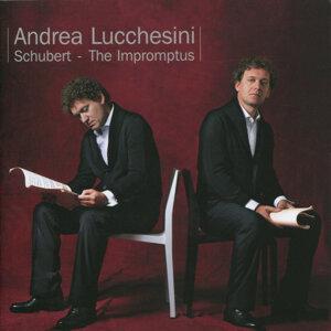 Schubert: Impromptus, Andrea Lucchesini