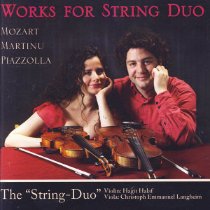 Works For String Duo