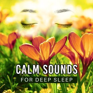 Calm Sounds for Deep Sleep – Soothing Waves, Calmness Dreaming, Mind Rest, New Age Music