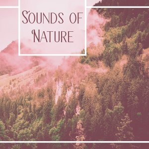 Sounds of Nature – Relaxing Music, Nature Sounds, Relief Stress, Reduce Anxiety, Rest, Instrumental New Age