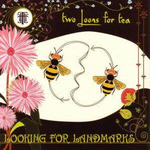 Looking For Landmarks