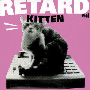Retarded Kitten