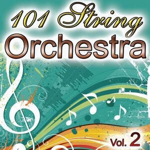 101 String Vol.2