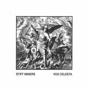 Vox Celesta