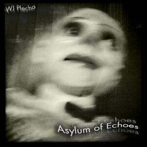 Asylum of Echoes