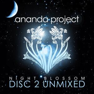 Night Blossom (Disc 2 Unmixed)