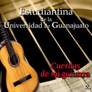 Cuerdas De Mi Guitarra