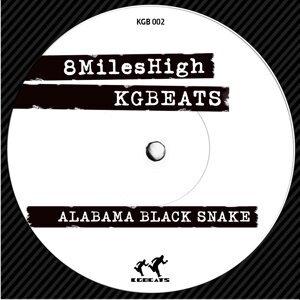 Alabama Black Snake