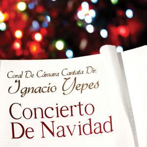 Concierto De Navidad (Christmas Concert)