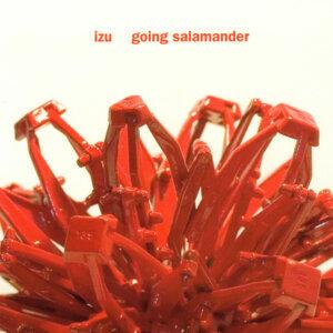Going Salamander