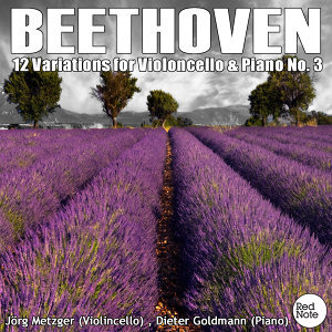 Beethoven: 12 Variations for Cello & Piano No. 3, Op.66