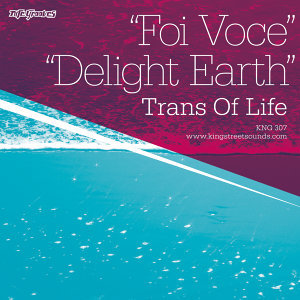 Foi Voce / Delight Earth