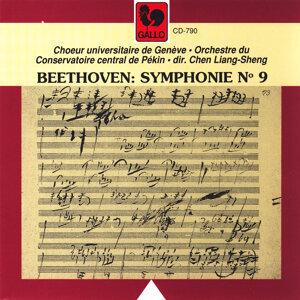 Ludwig van Beethoven: Symphonie No. 9 en ré mineur, Op. 125