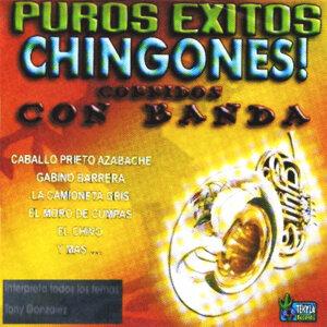 Puros Exitos Chingones! - Corridos Con Banda