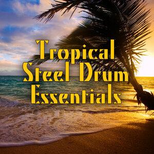 Tropical Steel Drum Essentials