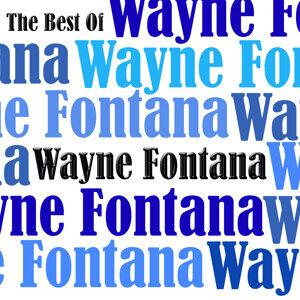 The Best Of Wayne Fontana