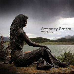 Sensory Storm