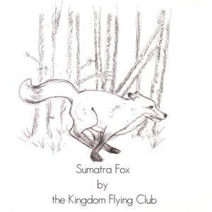 Sumatra Fox