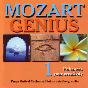 Mozart Genius, Volume 1