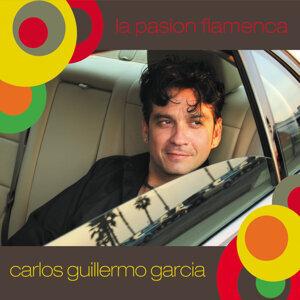 La Pasion Flamenca