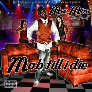 Mob Till I Die