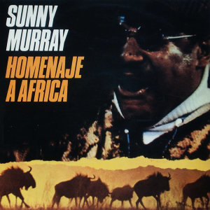Suns Of Africa
