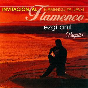 Flamenco'ya Davet