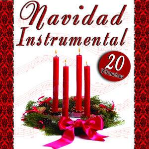 Navidad Instrumental Villancicos Volumen 1