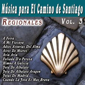 Musica Para El Camino De Santiago Regionales  Vol. 3