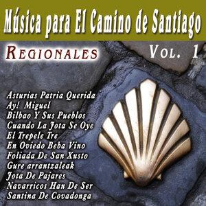 Musica Para El Camino De Santiago Regionales  Vol. 1