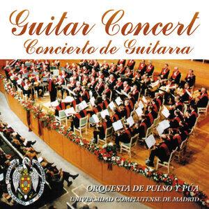 Guitar Concert, Concierto de Guitarra