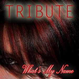 What's My Name? (Rihanna & Drake Tribute)