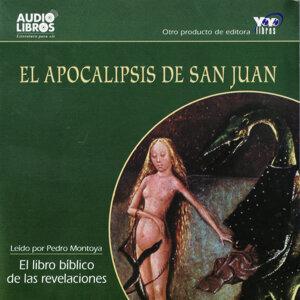 El Apocalipsis de San Juan - El libro Biblico de las revelaciones (Unabridged)