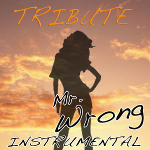 Mr. Wrong (Mary J. Blige feat. Drake Instrumental Tribute)
