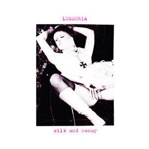 Silk And Honey
