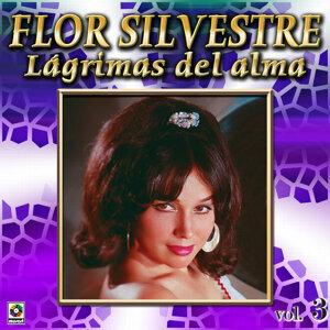 Lagrimas Del Alma Vol. 3