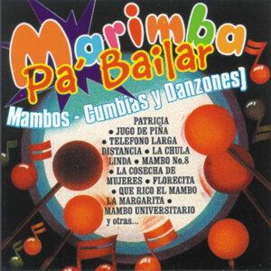 Marimba Pa' Bailar - Mambos, Cumbias  Danzones