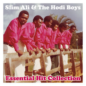 Essential Hit Collection