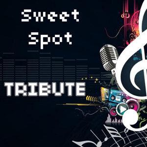 Sweet Spot (Instrumental Tribute to Flo Rida feat. Jennifer Lopez)