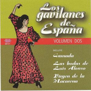 Pasodobles , jotas , bulerías , sevillanas y la música de España